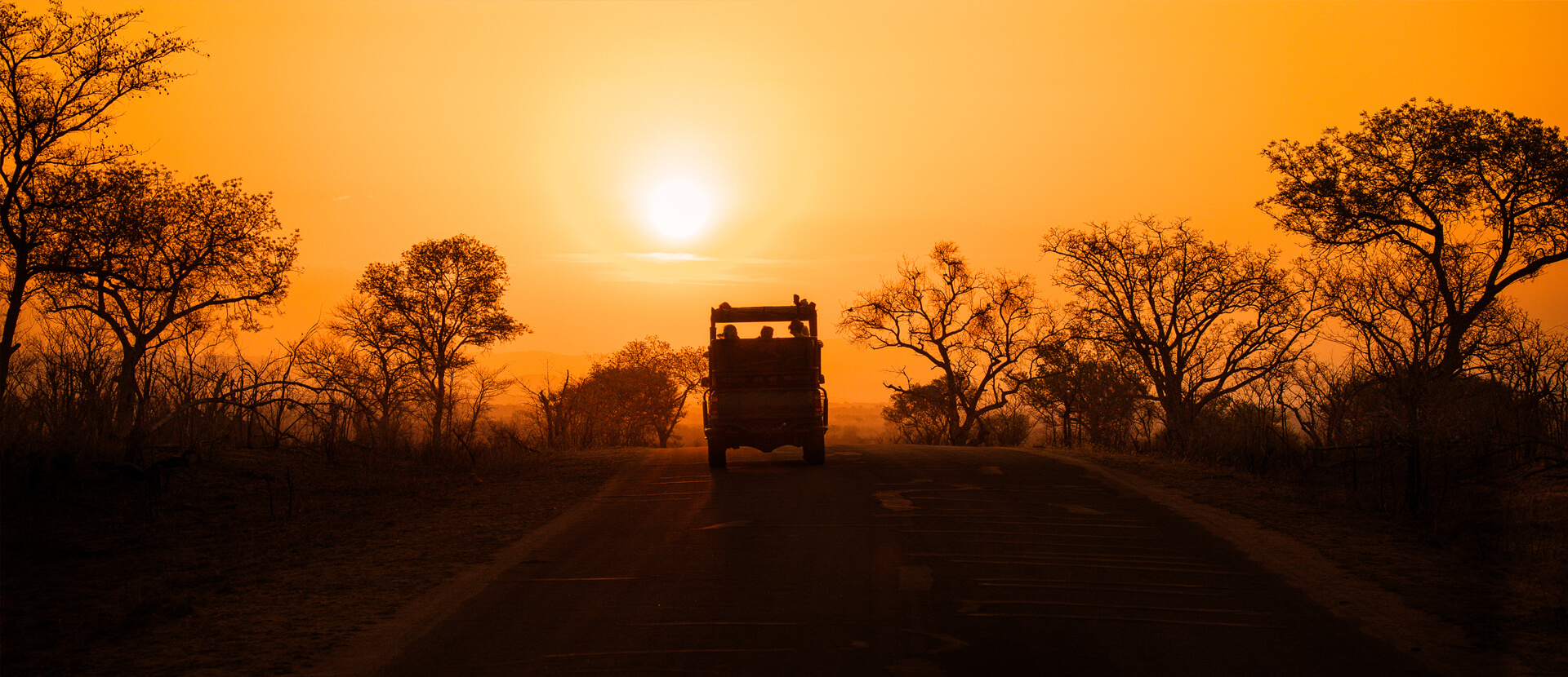Kruger National Park & Malaria Free Safaris