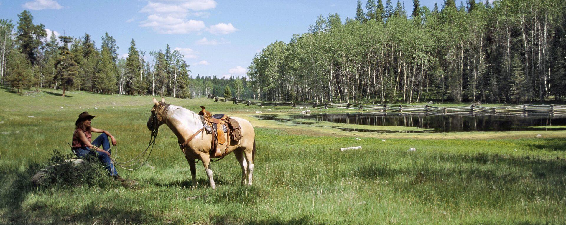 Siwash Lake Ranch