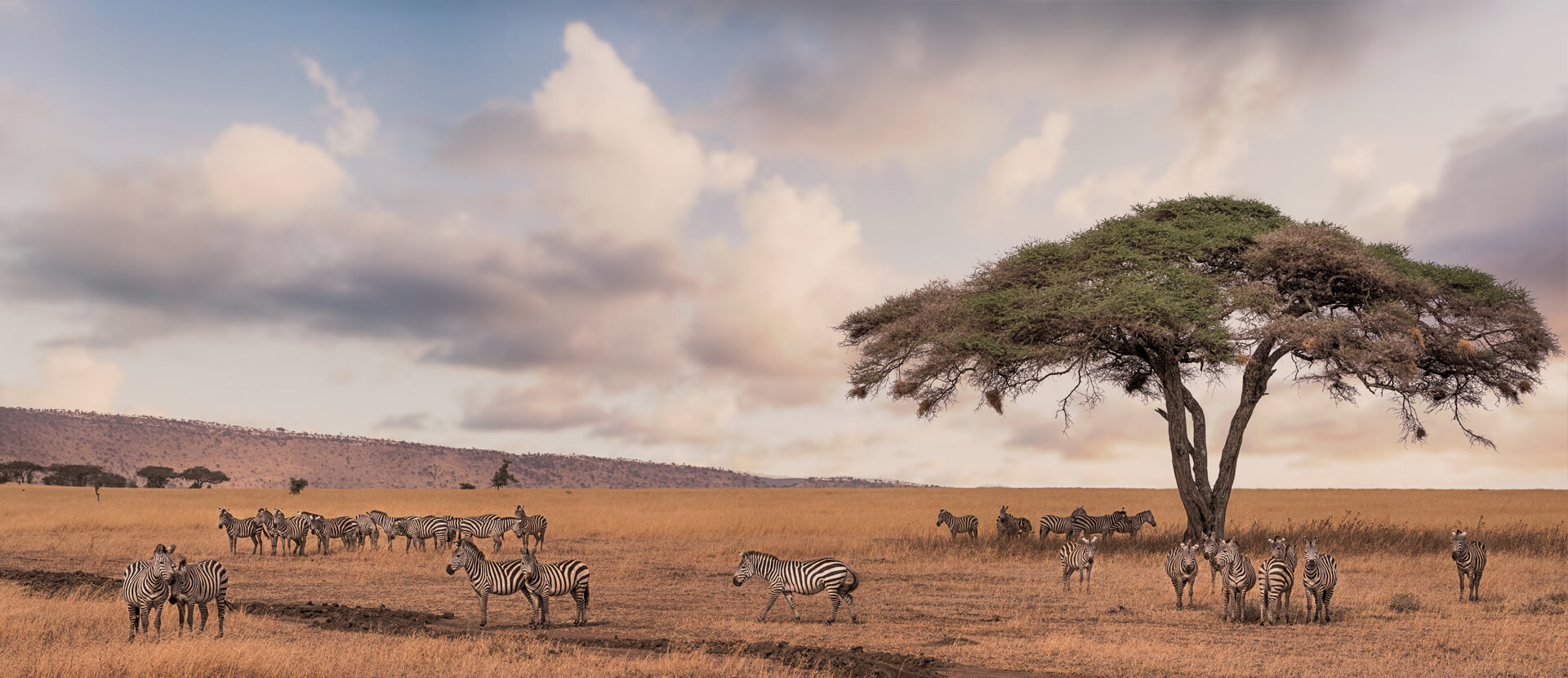 Julie's Top 5 Places to Stay in Africa
